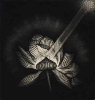 Product Image - Lotus flower<BR>Year: 2008<BR>